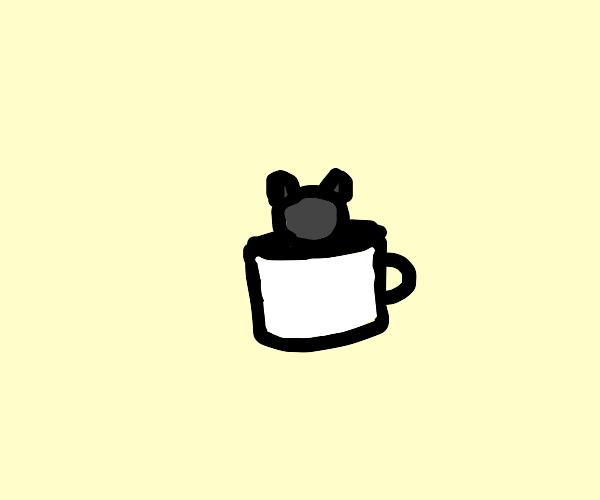 Puma in a Cup