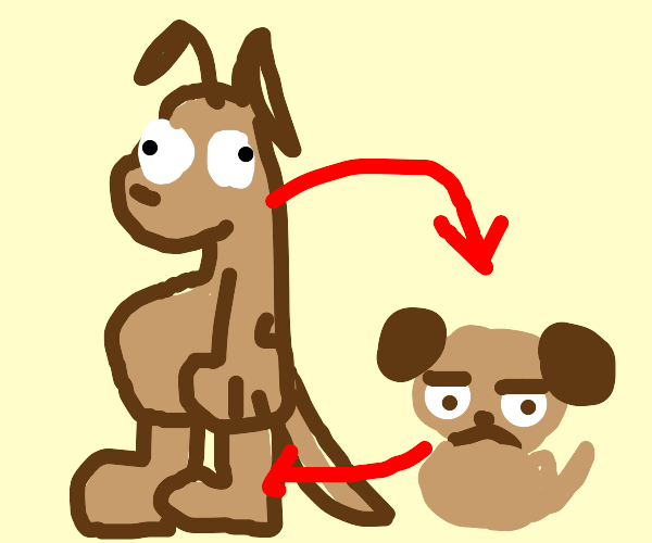 Wolf and puppy swap bodies
