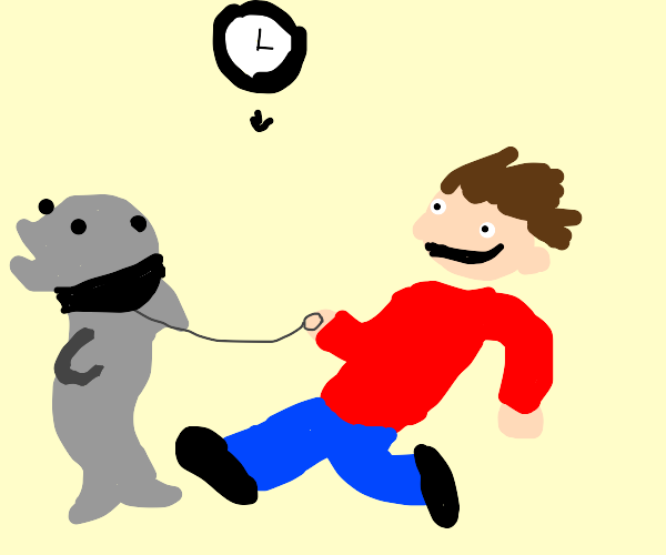 It's time to walk your pet dolphin