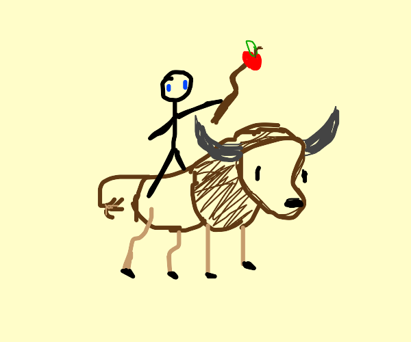 man rides buffalo with an apple on a stick