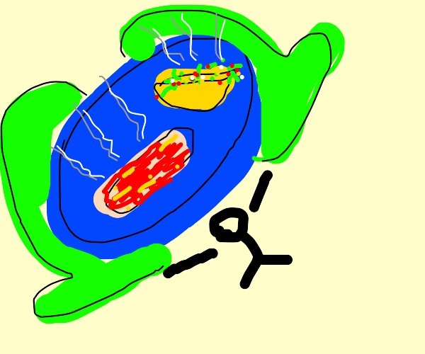 Giant Hot Dish