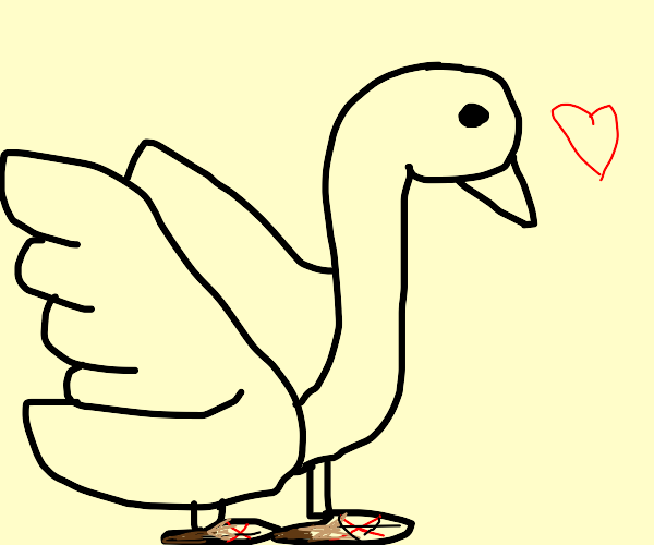 Swan wearing Shoes