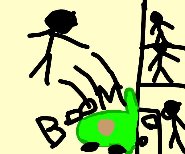 Green Avocado Car crashes