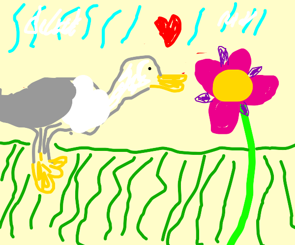 Seagull in love with a flower