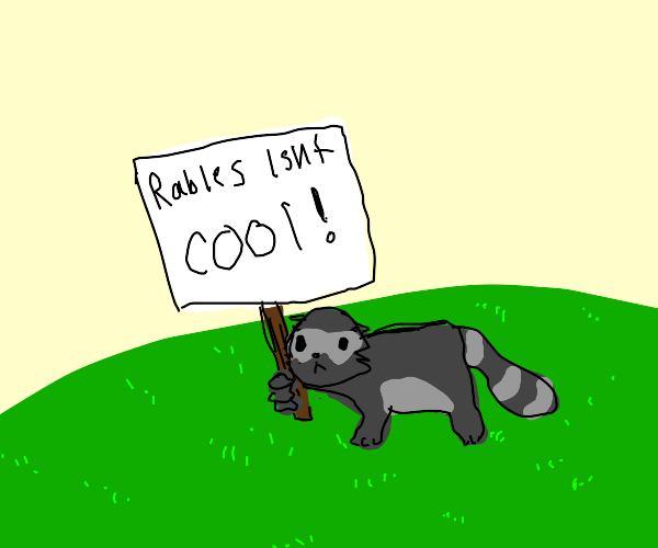 Raccoon doesn't think rabies is cool