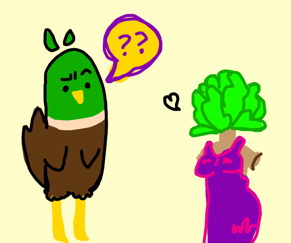 Duck confused at lettuce man