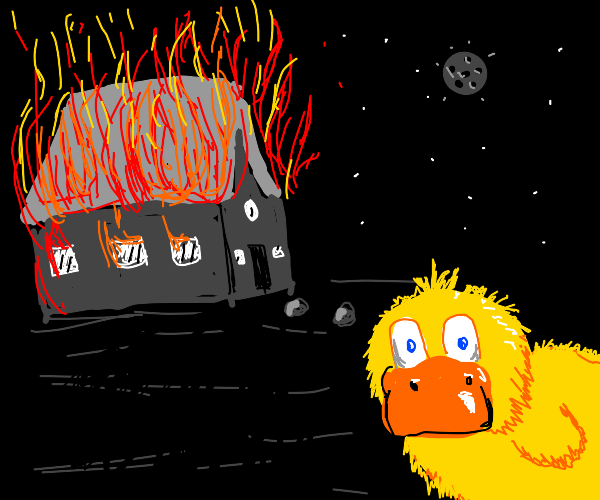 some ducks just want to watch the world burn