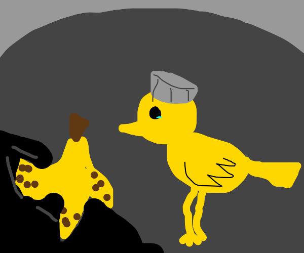 Trash Duck