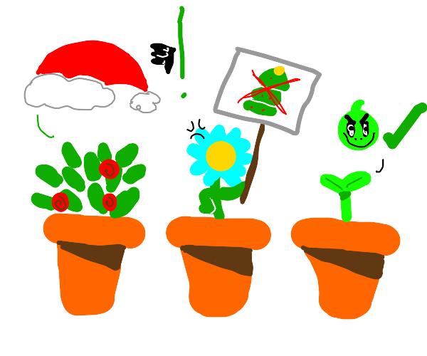 Grinch Plants?