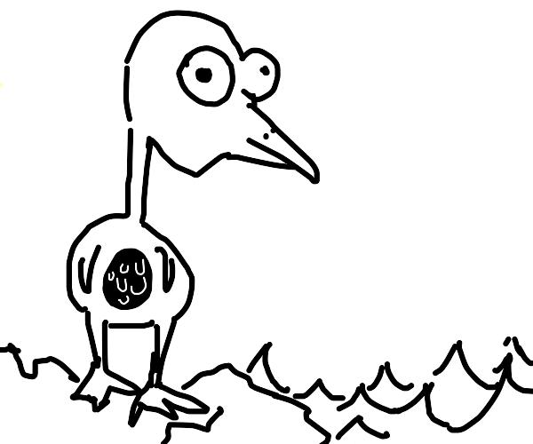 Pelican sits on rock in ocean