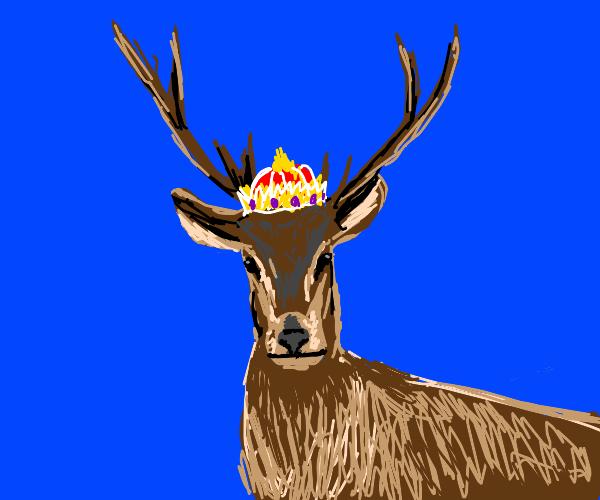 KING DEAR