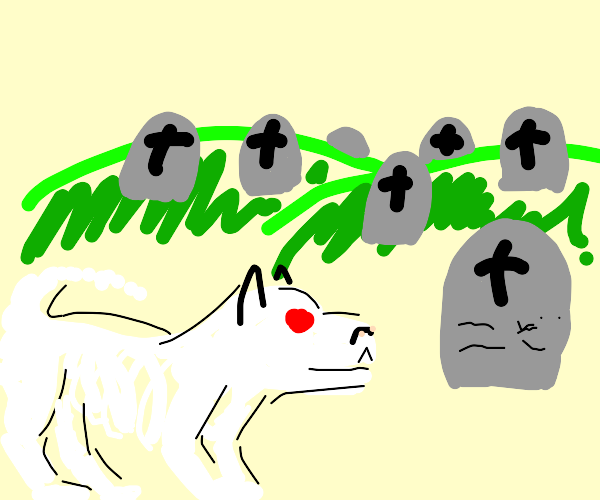 ghost dog in graveyard
