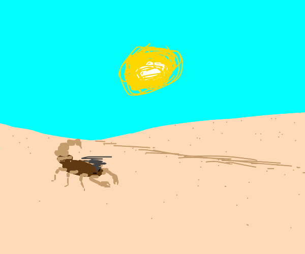 Upset scorpion in the desert