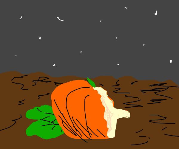 Half eaten pumpkin