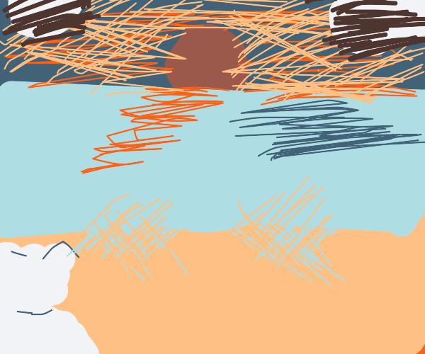 ice bear enjoying the sunset