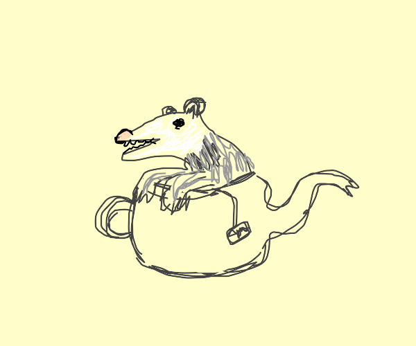 Possum in a teapot