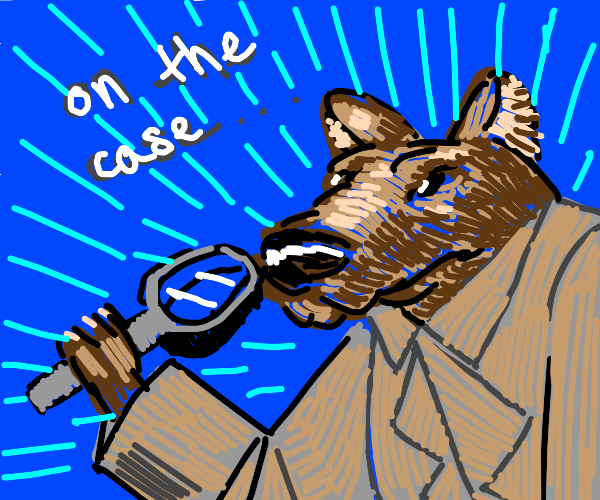 Detective Dog on the case