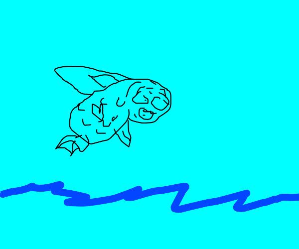 Fat Flyingfish