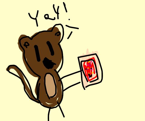 A happy monkey holding a pop tart