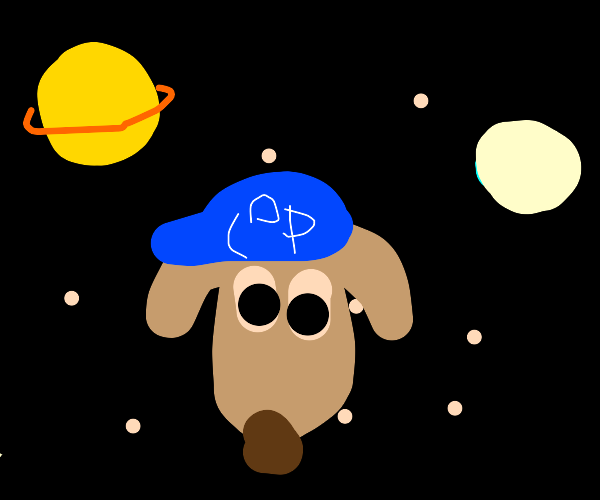 Space policial dog