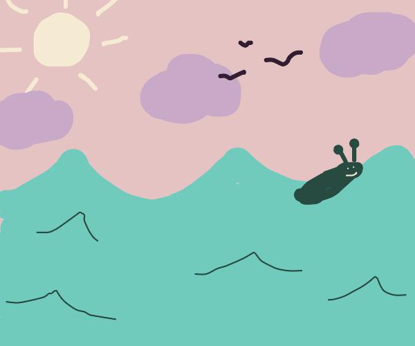 slug floating in water