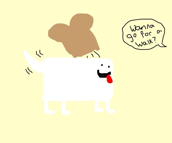 Pet Toaster