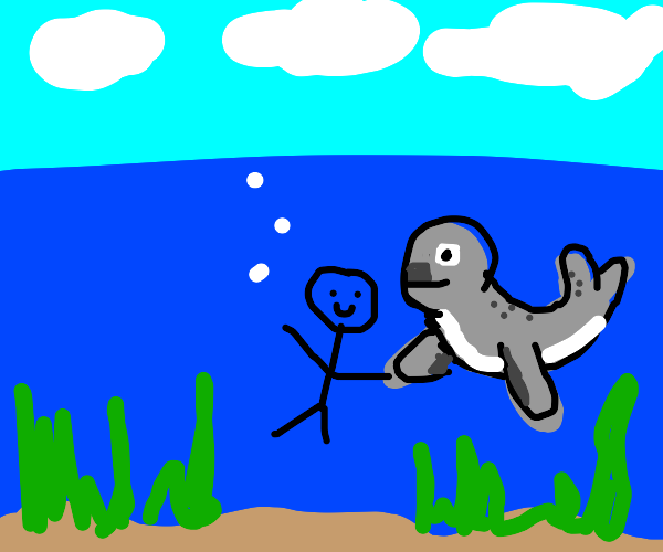 Shaking hands with a seel