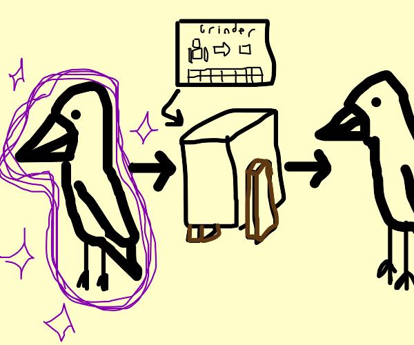disenchanted bird