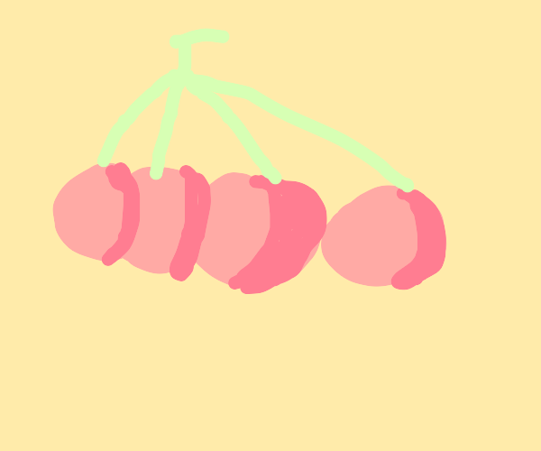 4 cherries growing on a branch