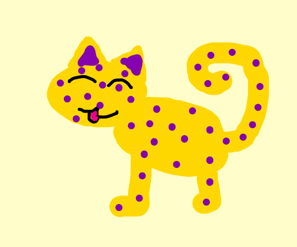 very cute exotic yellow cat with purple spots