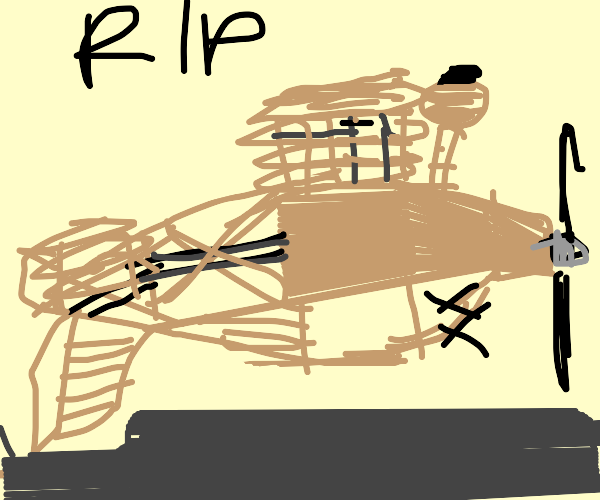 Wooden airplane accidentally died