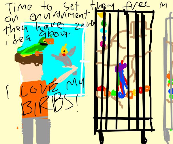 If you love someone, set them free