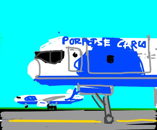 Porpoise Airline