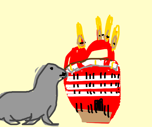 seal stares discontentedly at a heart (organ)