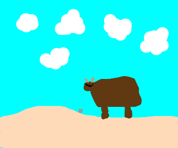Ox with sunglasses and a glass at the beach