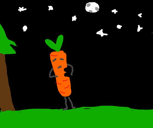 A  bitten carrot alone in the dead of night