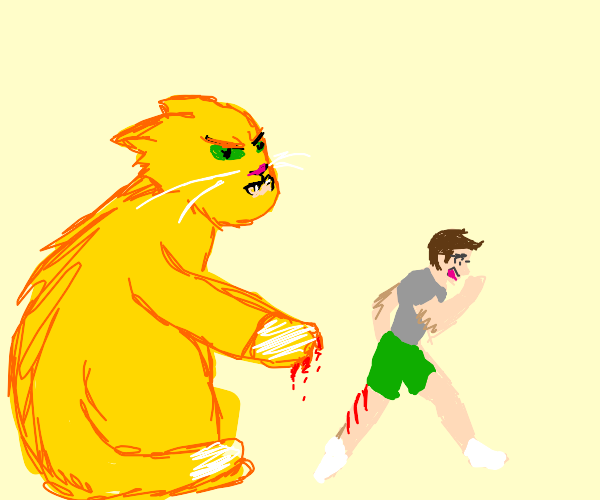 Man Getting Attack by Giant Cat