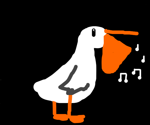 Singing pelican