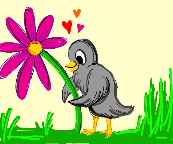 The bird hugs a flower