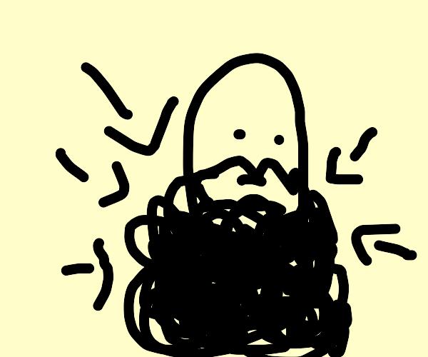 Ridiculous Beard