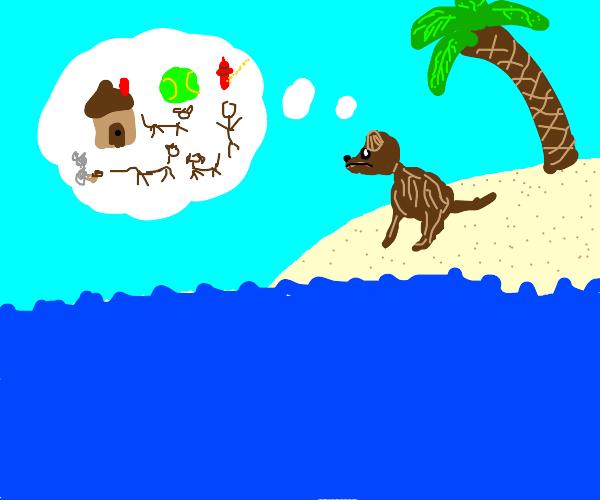 brown doggo is a bit bored on an island
