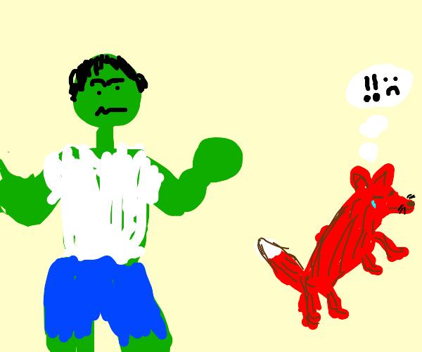 Fox terrified by hulk