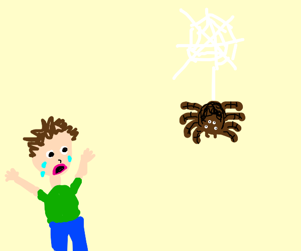 Person scared of spider