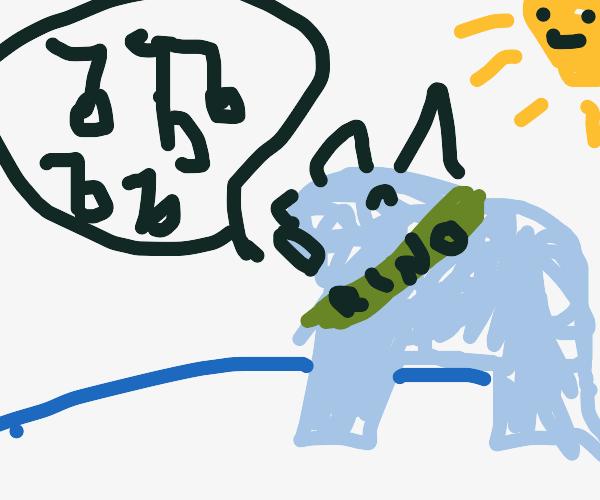 Rhinoceros Singing