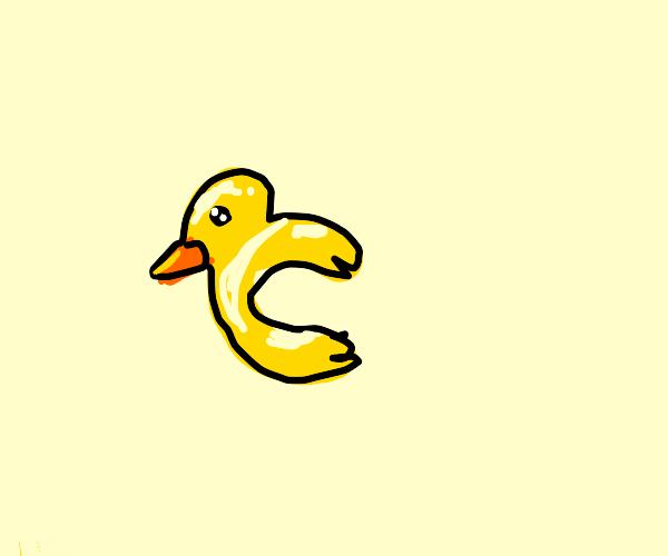 half of a duck
