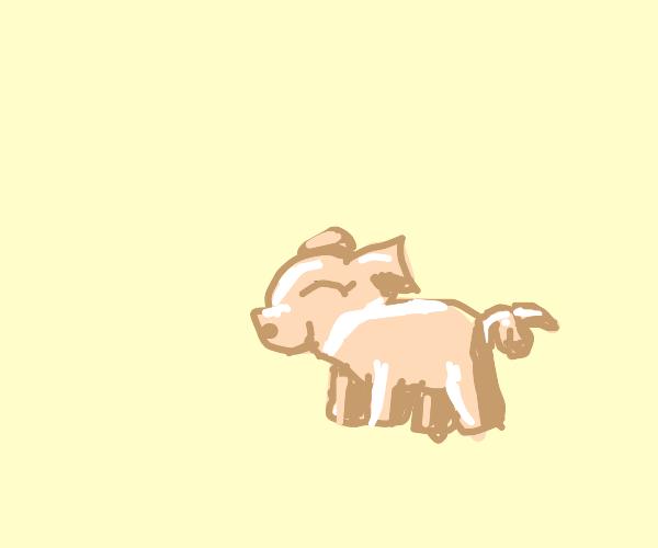 piglet smiling
