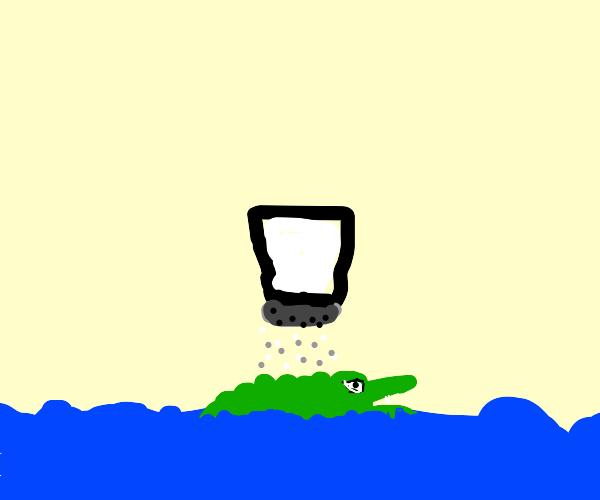 Salty crocodile