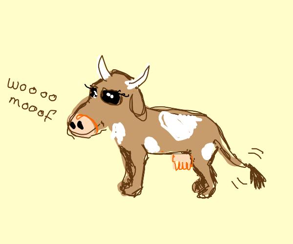 Sideways Brown Cow Dog