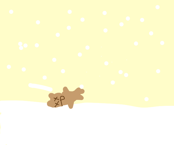 dead hamster in a snowstorm