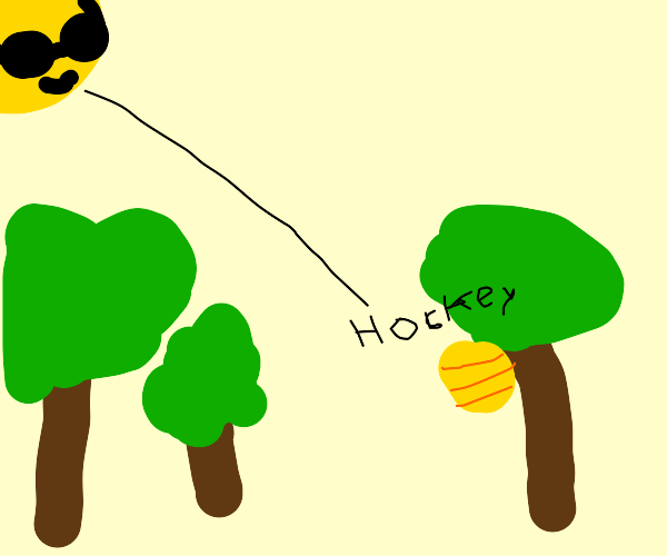 Sun shoots honey at a beehive in a forest
